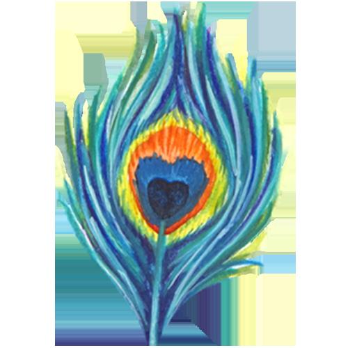 Ame de nature Logo