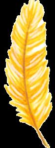 icone plume pour la méditation