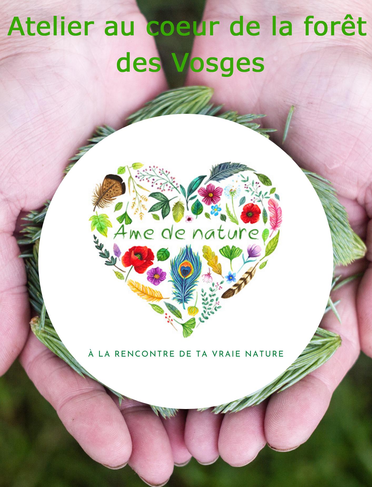 Atelier nature Vosges